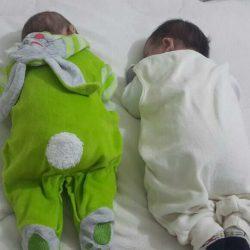 Bahçeci Bebekleri - 0088