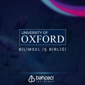 Bahçeci beginnt eine wissenschaftliche Zusammenarbeit mit der Oxford Universität
