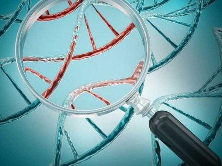 Genetik Testlerin Tekrarlayan Tüp Bebek Başarısızlıklarındaki Etkisi Nedir?