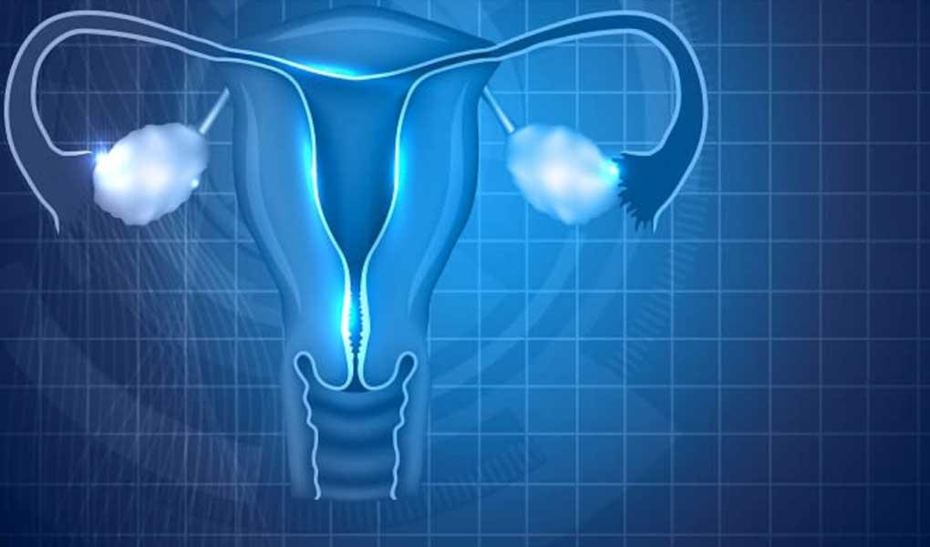 Tüp Bebek Tedavisi Sırasında Tüpler Niye Bağlanır?